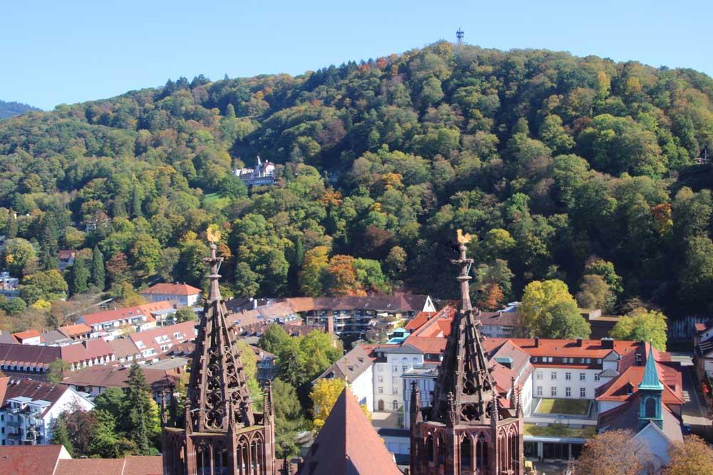 Visite guidée colline château Schlossberg de Fribourg